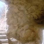 Nagnimo se nad prazan Isusov grob
