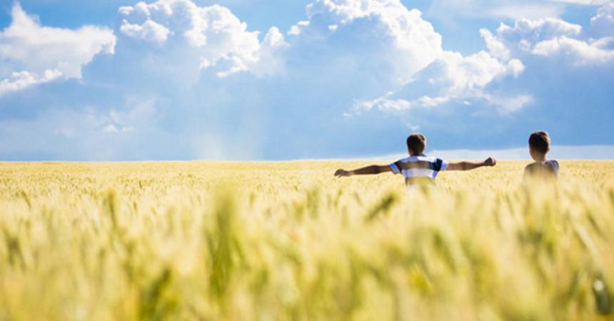 17 lekcija za sretan i ispunjen život koje treba zapamtiti
