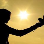 Samo s Duhom Svetim imamo najboljeg savjetnika za sve životne situacije