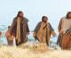 Isus nas šalje da idemo u susret drugima i liječimo bolesti nakupljene u srcima ljudi bez ljubavi!
