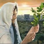 Svijet koji poznajemo i zemlja na kojoj živimo nisu vječni, Bog jest!