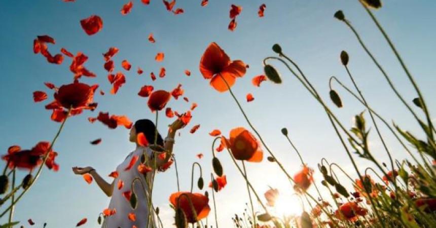 Zahvalnost i emocionalna inteligencija