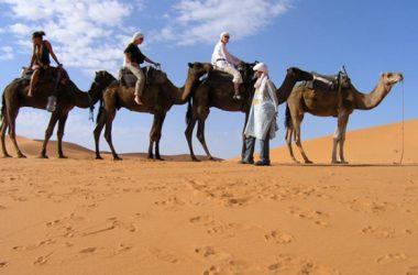 Zdenac u pustinji