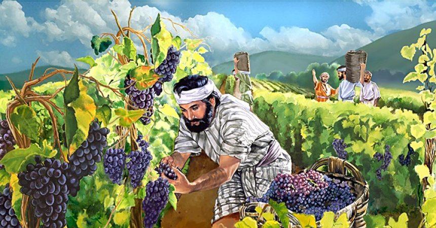 Bog ne plaća po učinku, nego po spremnosti da vršimo njegovu volju!