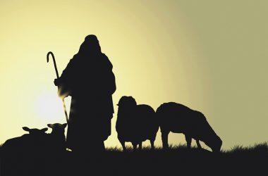 Nemojmo se oglušiti na glas Dobroga Pastira koji nas čuva, brani i vodi!