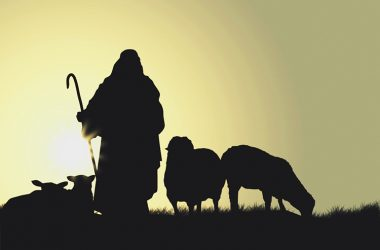 Krist je pastir i vođa, prepun odgovornosti, brige i predanja za drugoga!