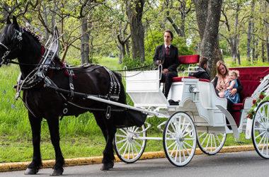 Život je vožnja kočijom koju vuku dva crna i dva bijela konja