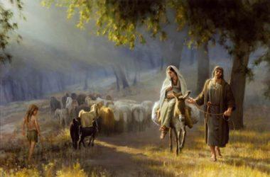 Badnjak – Bog dolazi da spasi svakoga od nas osobno!