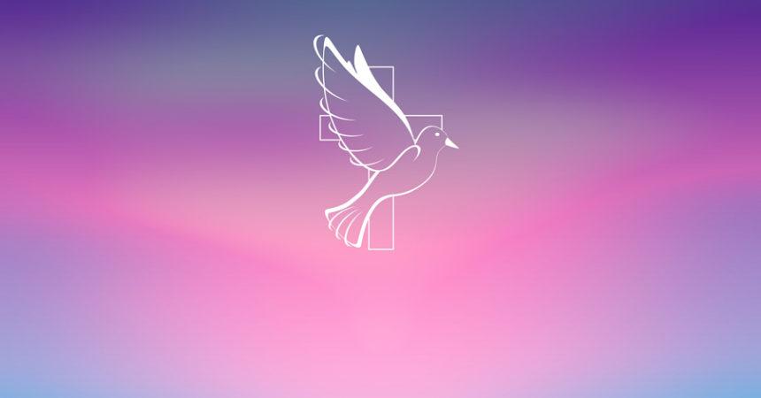 Otvorimo se djelu Duha Svetoga, On je naš štit, naš branitelj i naše posvetilište!